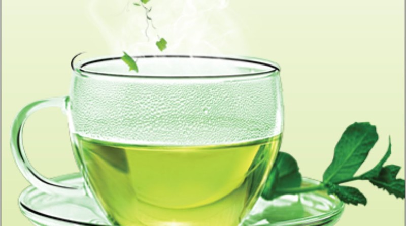 Green Tea Bags Benefit